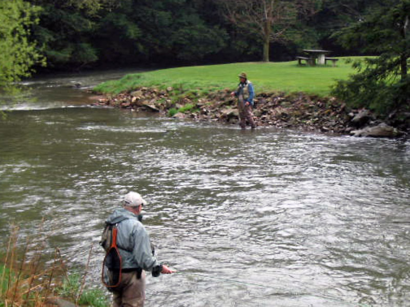 Fly fishing the famous spruce creek in pennsylvania for Pa fishing laws